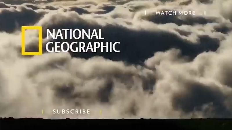Video precioso de National Geographic - Ignacio Isusi